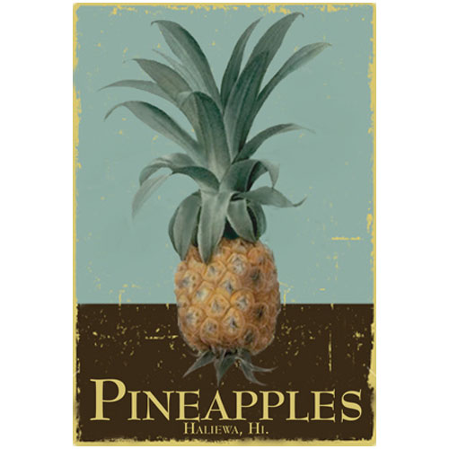 Pineapples Boutique Hawaii logo designed by Rousseau Graphics